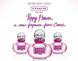 Group of poppy flower fragrance coach signature perfume for women by coach poppy flower mightylinksfo