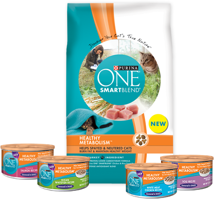 Purina ONE Healthy Metabolism
