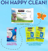kitkland wipes
