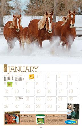 free 2014 horse calendar