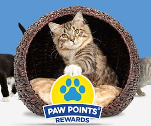 paw points
